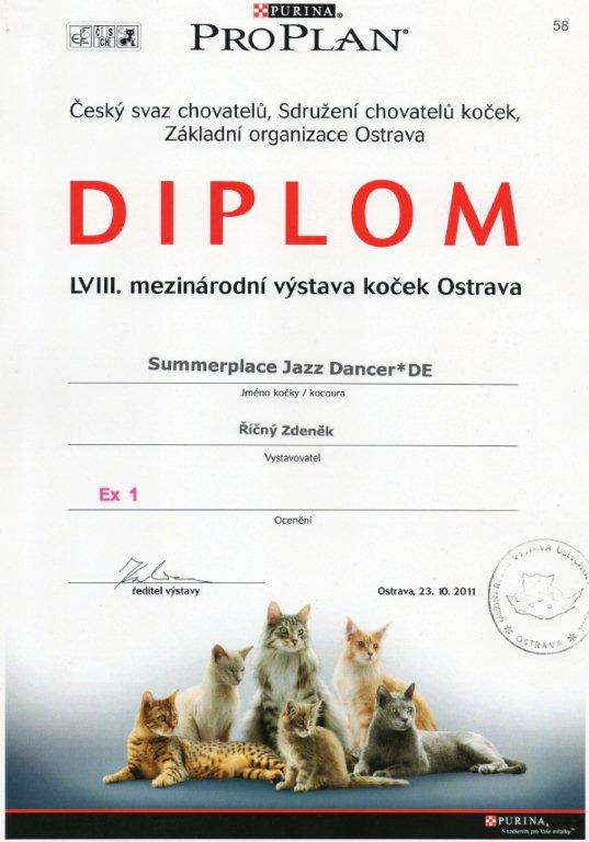 Diplom - Summerplace Jazz Dancer*DE